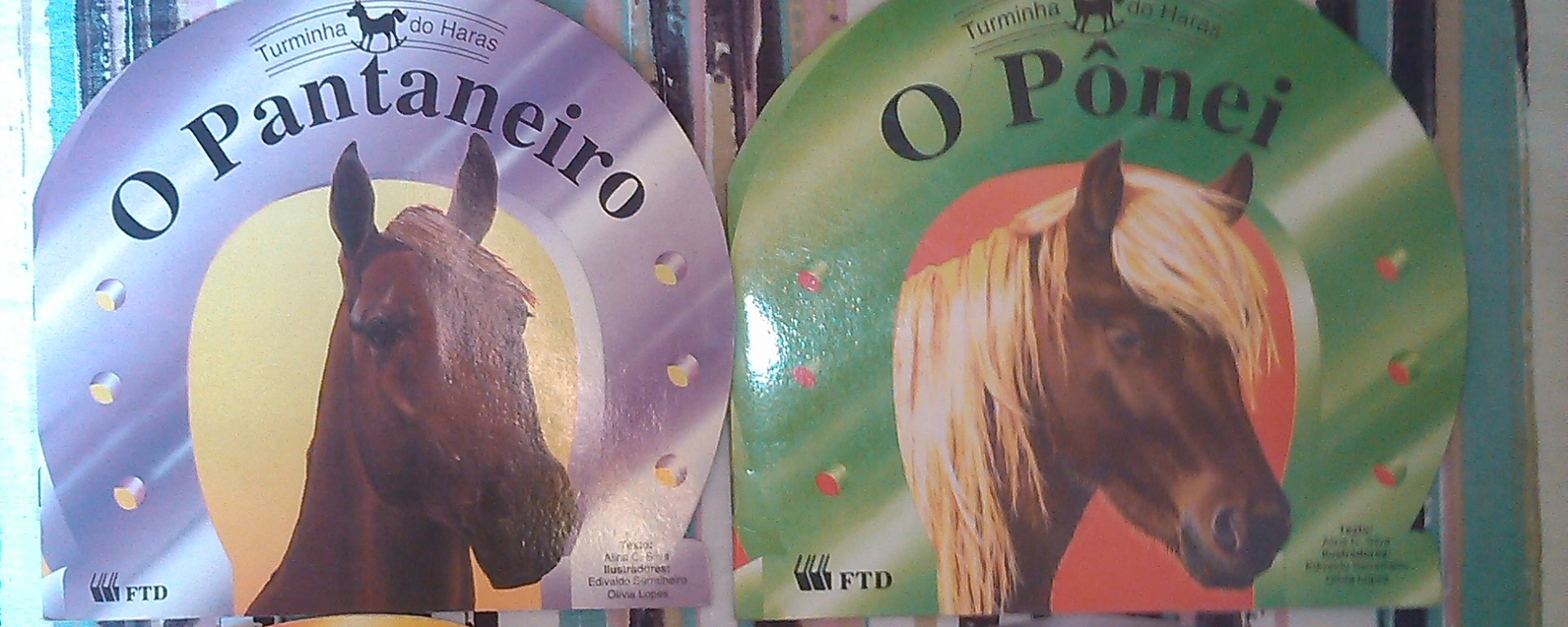Livro para equoterapia sobre as diferentes raças de cavalo.