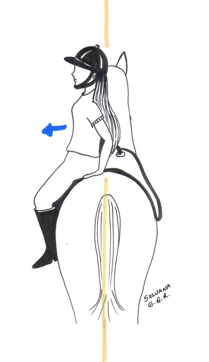 Exercício da princesa para fortalecer a musculatura dorsal