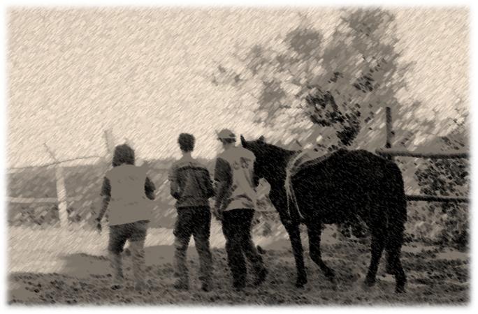 Foto da equipe multidisciplinar, do praticante e do cavalo, de costas, no final da sessão.
