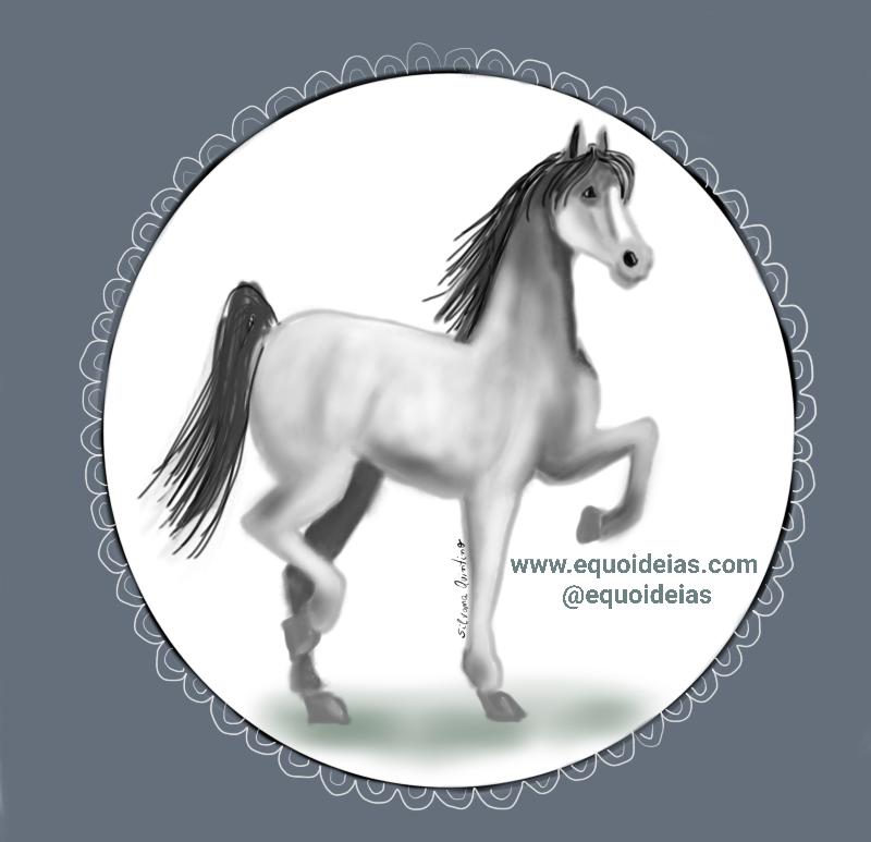Tipos de andaduras do cavalo