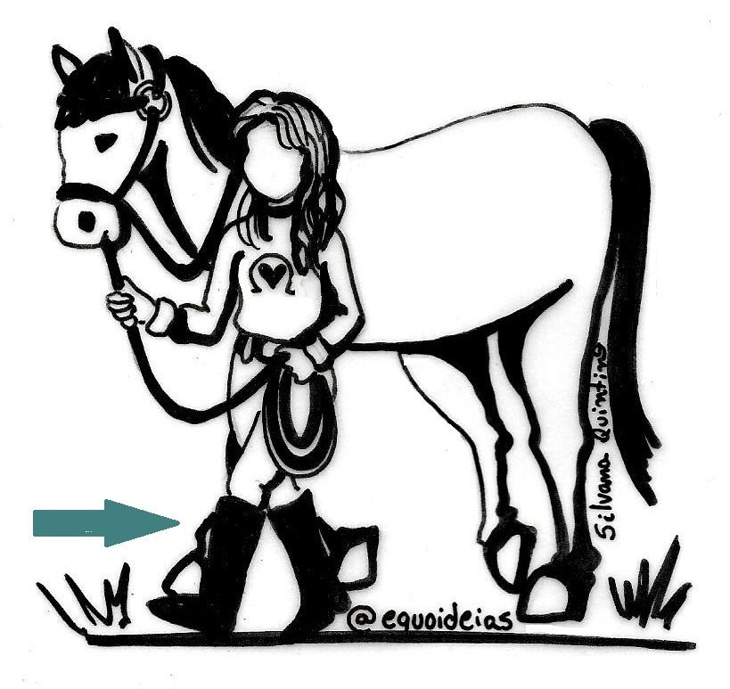A marcha humana e a marcha do cavalo.