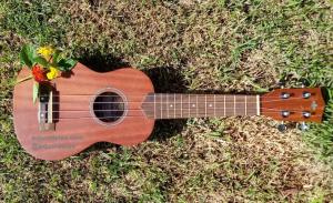 Foto de um ukulele para ilustrar o texto.